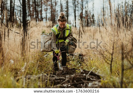 Woman planting trees in forest using shovel. Female forester planting seedlings in deforested area. Stock foto ©