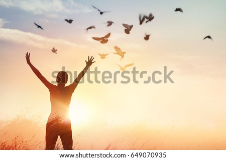 Woman praying and free bird enjoying nature on sunset background, hope concept  #649070935