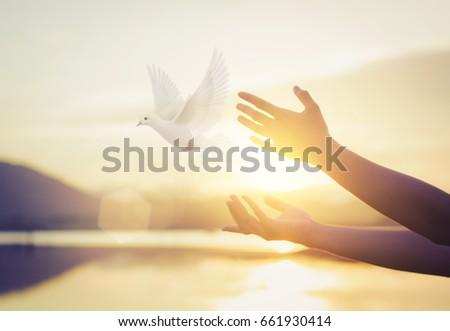 woman praying and free bird...