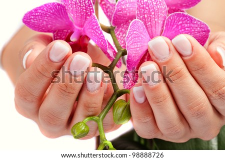 Woman's french manicure - stock photo