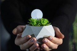 Woman's hand holding the flower pot. Concrete flower pot. Give flowers to your loved one. Plant pot in girl's palm