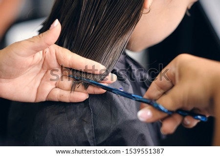 Woman's hands cuts hair with professional scissors. Professional hairdressing