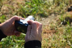 woman's hands photographing a green landscape