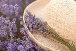 Woman's hat in lavender field