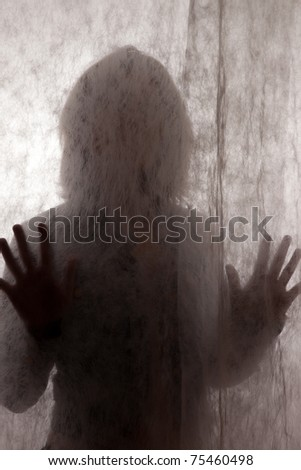 Woman's silhouette behind a vail