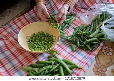 Woman shelling fresh green peas Stok fotoğraf ©
