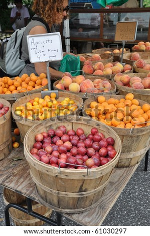 Woman Shopping at Fresh Organic Farm stand Fruits Plums Peaches Apricots