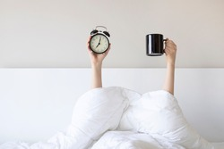 Woman showing arm raised up holding coffee cup and black alarm clock behind duvet in the bed room, Young girl with two hands sticking out from the blanket. wake up with fun in morning concept.