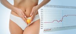woman showing ovulation process holding near ovary ball like ovum. Fertile Human Egg on the background basal body temperature chart