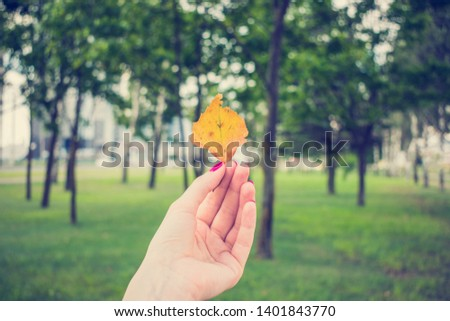 Woman shows yellowed leaf, girl's hand, close up #1401843770