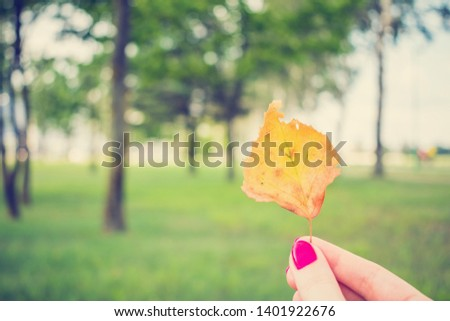 Woman shows yellowed leaf, girl's hand, close up #1401922676