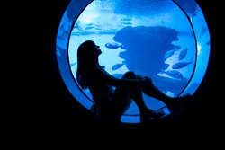 Woman silhouette in front of big aquarium. Dark blue photo with sea fish.