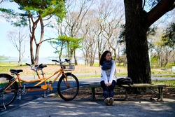 Woman sit on bench beside two people bicycles in famous garden at Hitachi seaside park,blue nemophila flowers hill on background view in Japan.