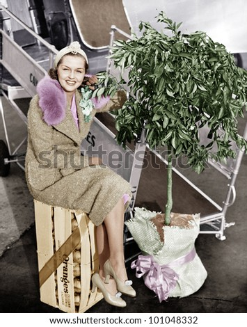 Woman sitting on a crate of oranges next to a plane and citrus tree