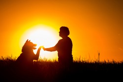 Woman sitting outside in the grass, shaking hands with her Akita dog.