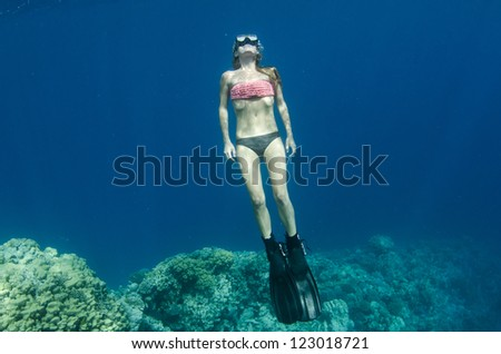 Woman snorkeling and free diving On a coral reef in clear blue water