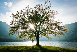 Woman standing by the tree on a coast of a lake