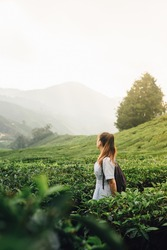 Woman standing in the middle of the tea plantation in the morning.