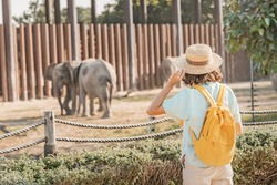 Woman student with a yellow backpack watches the behavior of elephants in a zoo or nature park reserve