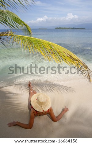 Woman sunbathing under an overhanging coconut palm on a tropical beach
