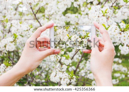 Woman takes photos of cherry blossom on a smartphone. Spring natural background #425356366