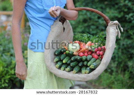 woman taking basket with vegetable