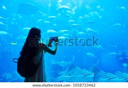 Woman taking picture in large aquarium in Dubai