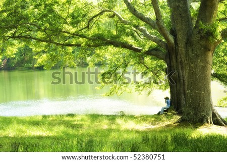 Woman taking picture under oak tree in glow of afternoon sun in soft focus