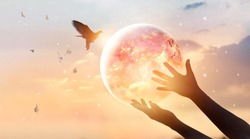 Woman touching planet earth of energy consumption of humanity at night, and free bird enjoying nature on sunset background, hope concept, Elements of this image furnished by NASA