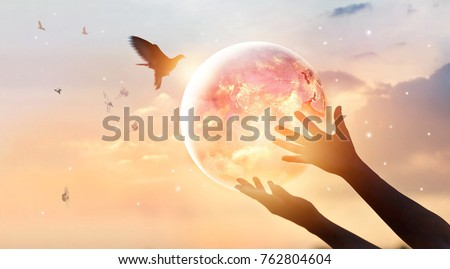 Woman touching planet earth of energy consumption of humanity at night, and free bird enjoying nature on sunset background, hope concept, Elements of this image furnished by NASA  #762804604
