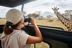 Woman tourist on safari in Africa, traveling by car with an open roof of Kenya and Tanzania, watching giraffes and antelopes in the savannah.National park Serengeti.