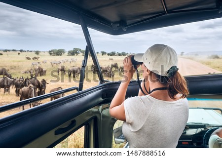 Woman tourist on safari in Africa, traveling by car with an open roof of Kenya and Tanzania, watching zebras and antelopes in the savannah.National park Serengeti
