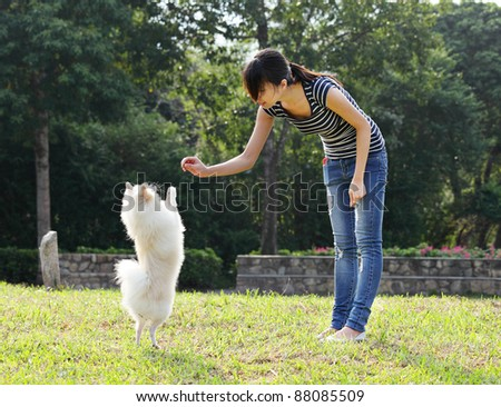 woman train her dog - stock photo