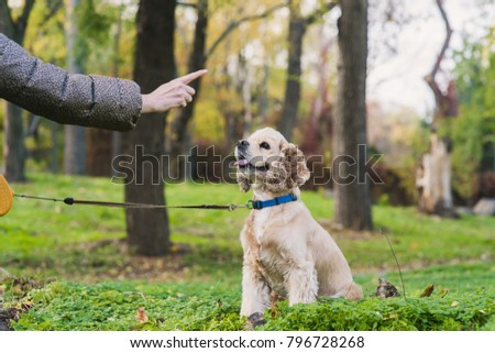 Woman training her dog in park