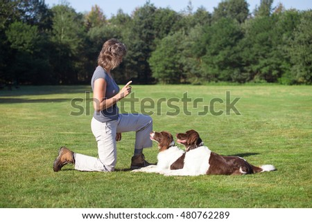 Stock Photo woman training two dogs in a meadow