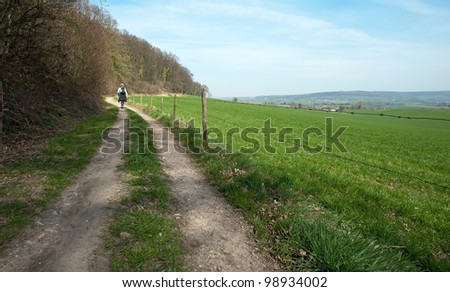 Woman walking along a forest in spring