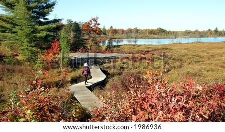 Woman walking on a boardwalk in the Autumn