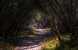 Woman Walking Tree Tunnel