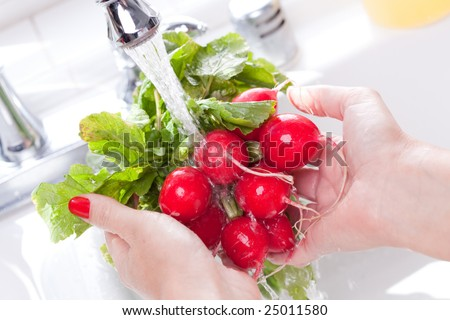 Woman Washing Radish in the Kitchen Sink.