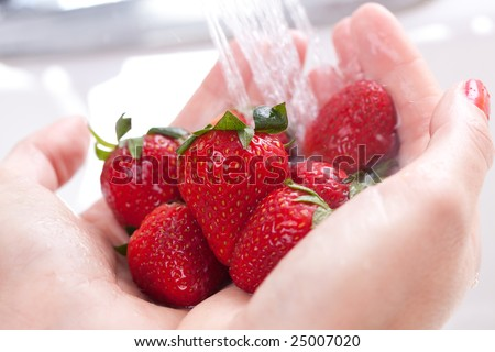 Stock Photo Woman Washing Strawberries in the Kitchen Sink.