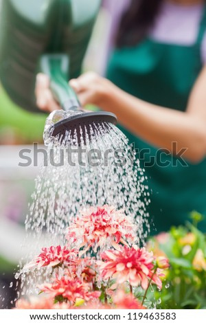 Woman watering flowers in garden centre