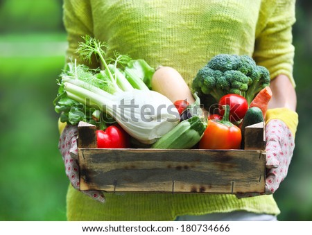 Woman wearing gloves with fresh vegetables in the box in her hands. Close up #180734666