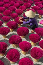 Woman wearning conical hat is drying sticks of incense at yard at Tay Ninh province, Vietnam