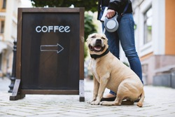 Woman with a dog stand next to a billboard with the inscription coffee on the street in city.