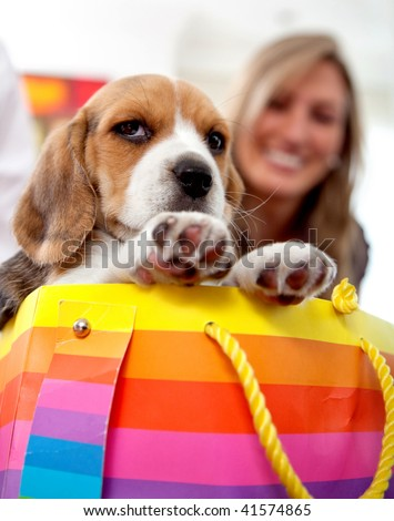 woman with a puppy in a shopping bag