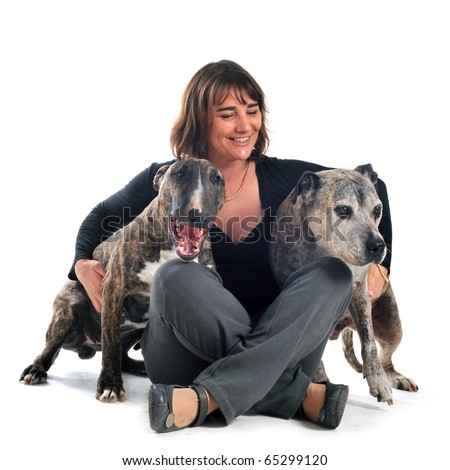 woman with american staffordshire terrier and bull terrier in front of white background - stock photo