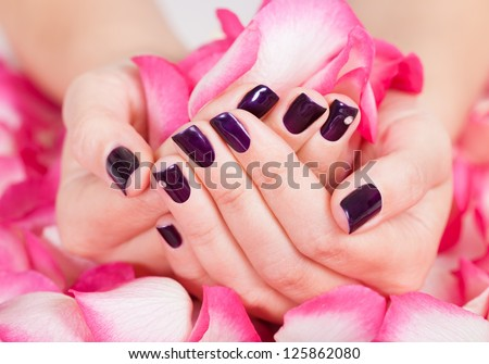 Woman with beautiful manicured fashion nails holding a handful of pink rose petals