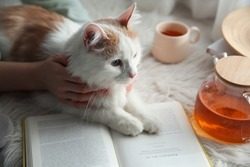 Woman with cute fluffy cat, tea and book on faux fur, closeup