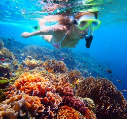 Woman with mask snorkeling in clear water over vivid coral reef