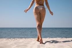 Woman with perfect body in bikini walking on sandy beach near sea, closeup. Back view